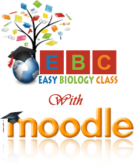 Moodle easybiologyclass