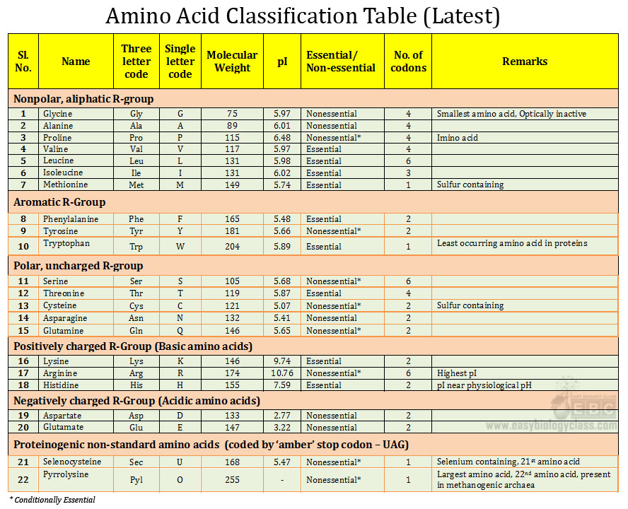 MCQ Biology with Answers: Biochemistry: Amino Acids 2 ...