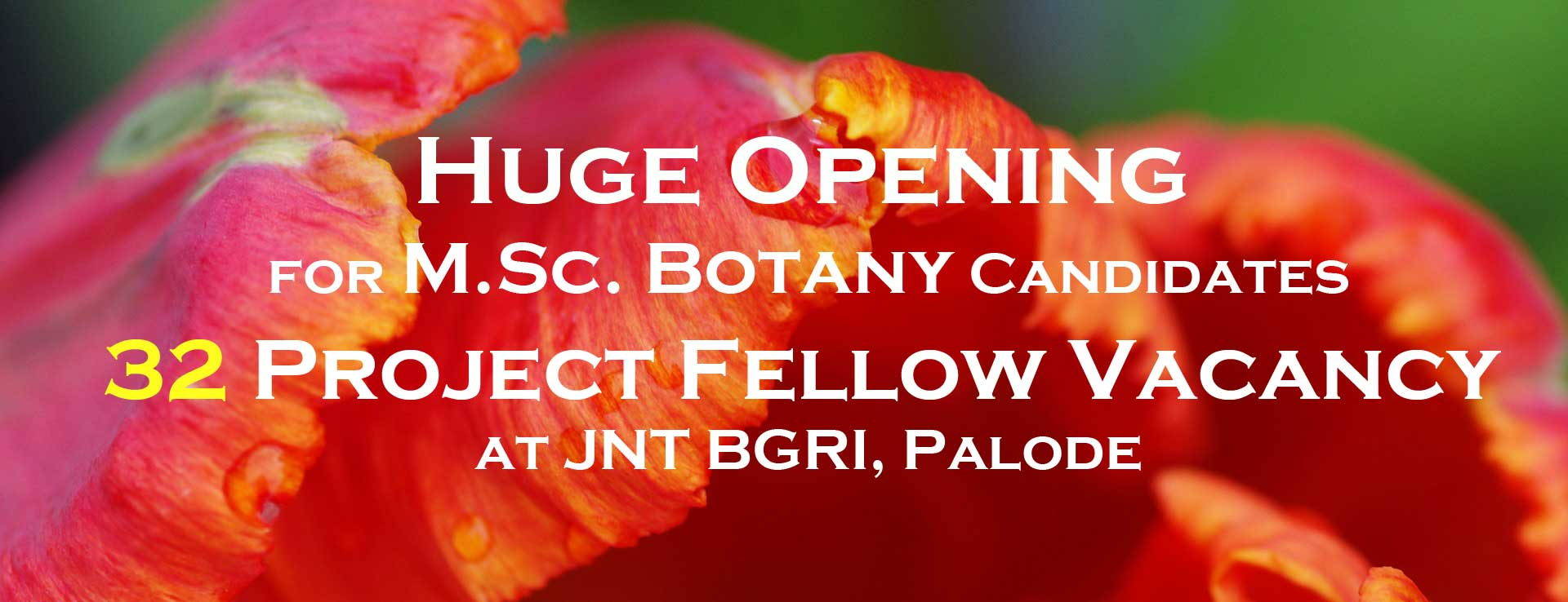JNTBGRI Botany project fellow vacancy notification