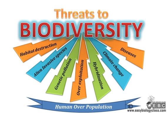 Causes of biodiversity loss degradation