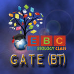 GATE Biotechnology