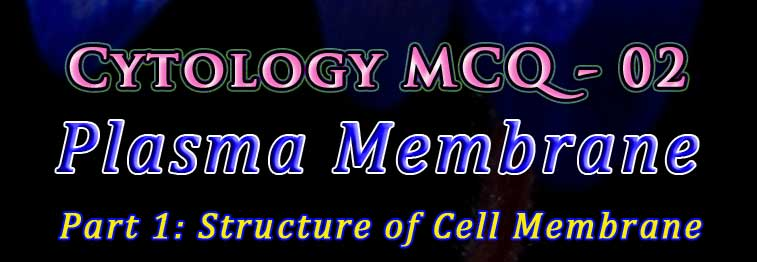 cytology quiz plasma membrane