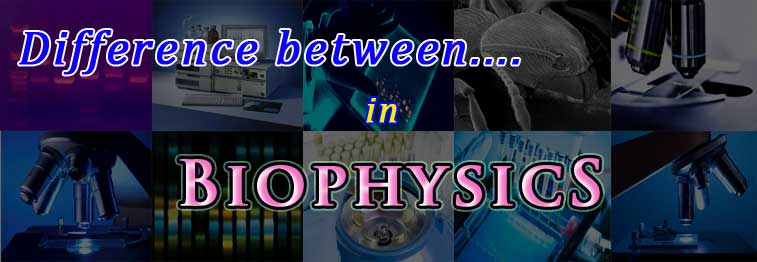 compare and contrast biophysics