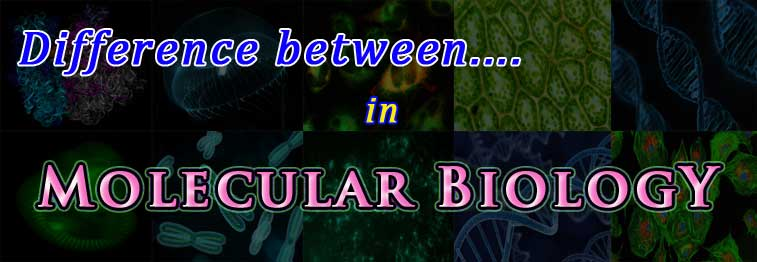 compare topics in molecular biology