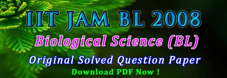 JAM BL Previous Papers