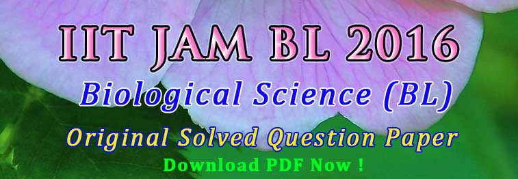 jam bl 2016 answer key