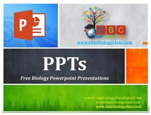 PPT and PPTx Presentation in Biology | easybiologyclass