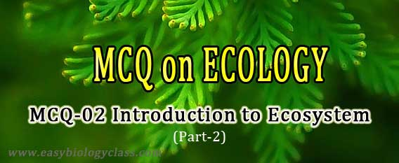 environmental science test questions and answers