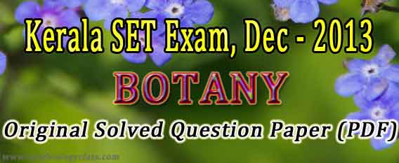 ielts sample essays academic download