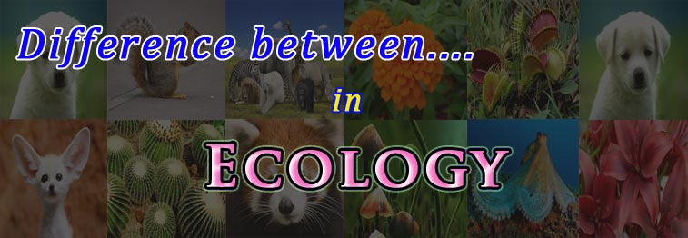 ecology study materials