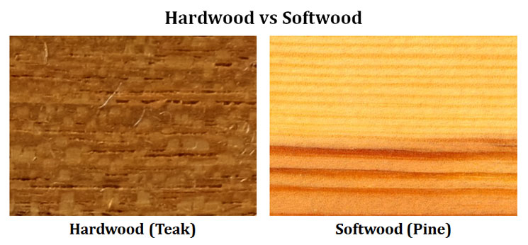 Difference Between Softwood And Hardwood Easybiologyclass