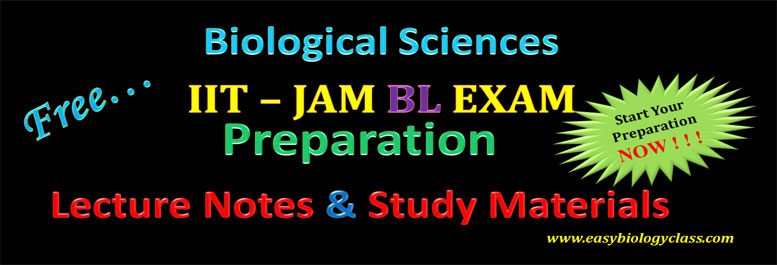 JAM BL Preparation Guidelines