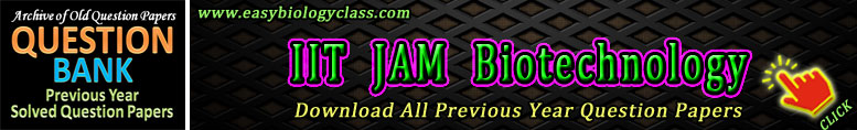 JAM BT Solved Papers PDF