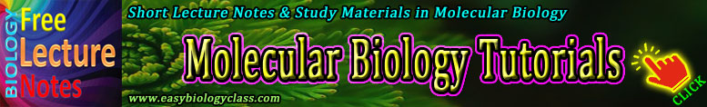 Molecular Biology Short Notes