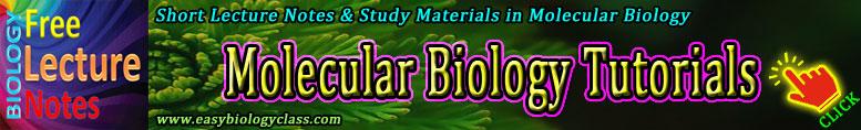 Molecular Biology Short Notes