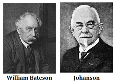 Contributions of Bateson in Genetics