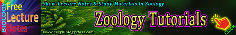 Zoology Short Notes