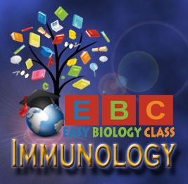 Difference - Cell-mediated and Humoral Immunity
