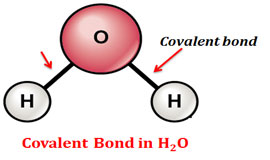 Structure of covalent bond in water
