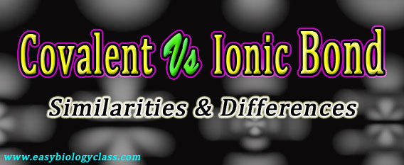 Compare Covalent and Ionic Bonds