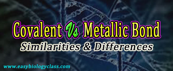 Covalent vs Metallic Bonds
