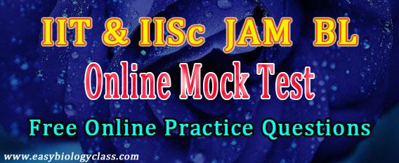 IISc JAM BL Mock Test