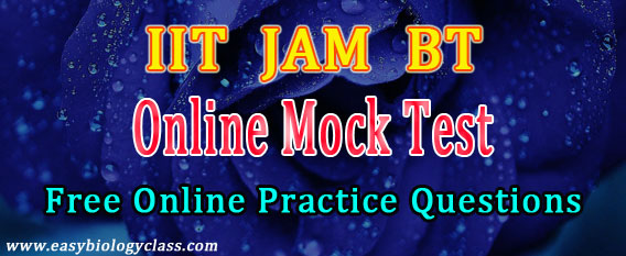 IISc JAM BT Mock Test