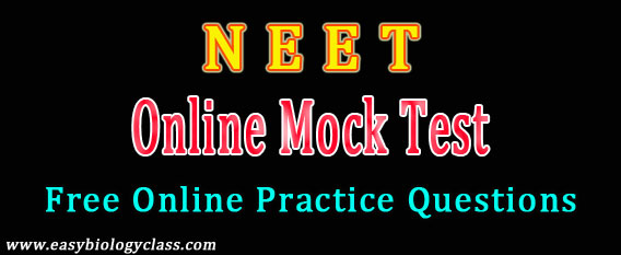 NEET Medical Entrance Mock Test