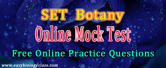 Botany SET Online Mock Test