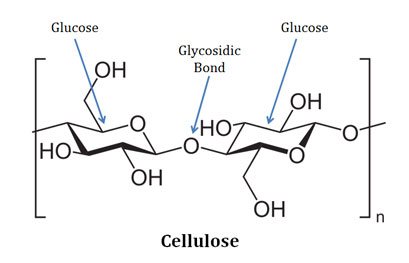 what is cellulose