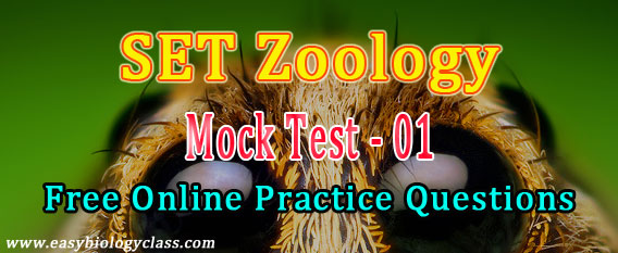 SET Zoology Model Questions