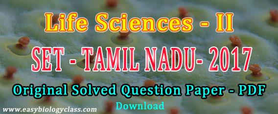 State Eligibility Test Tamil Nadu