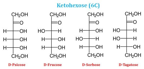 Psicose, Fructose, Sorbose and Tagatose
