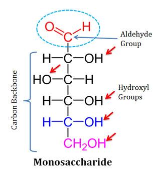Polyhydroxy aldehydes