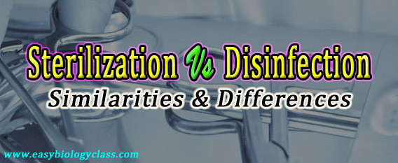 Compare sterilization and Disinfection