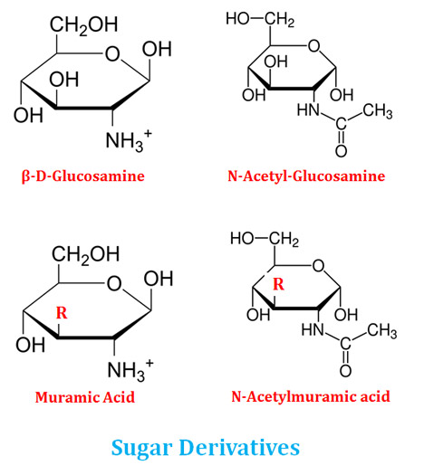 what are sugar derivatives