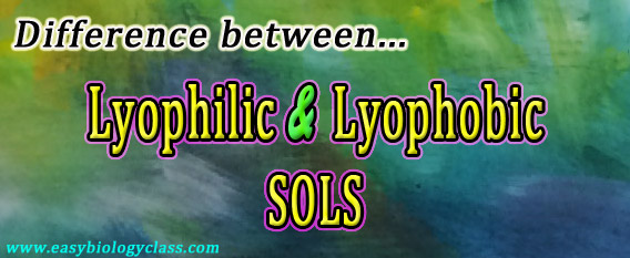 Compare Lyophilic and Lyophobic Sols