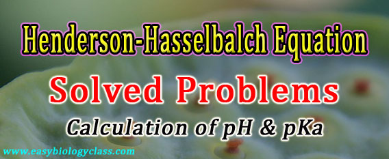 Henderson Hasselbalch Equation Sample Problems