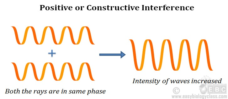 interference in phase contrast microscope