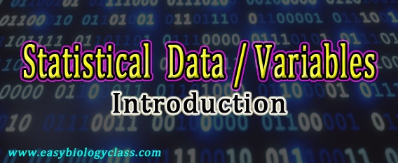 What is Data or Variable