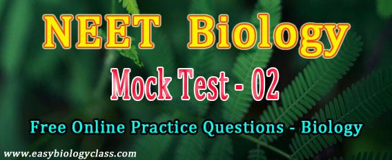 Biology NEET Questions