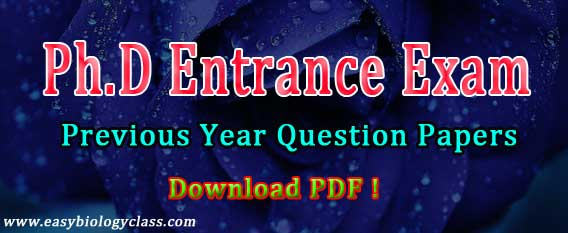 PhD Entrance Test Previous Papers