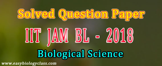 JAM BL Solved Papers 2018