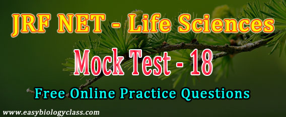 NET June 2018 Mock Test
