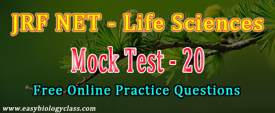 Life Science NET Model Papers