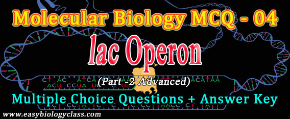 molecular biology multiple choice questions