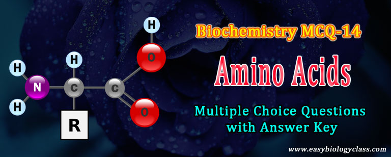 amino acids quiz
