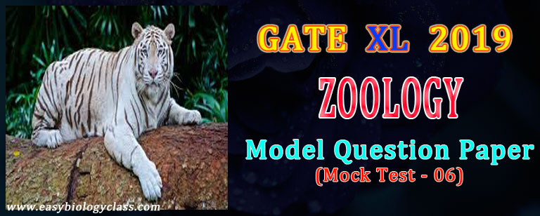 gate xl zoology model paper