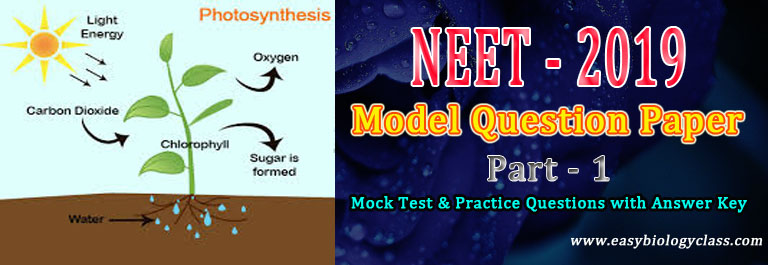 neet 2019 mock test 1