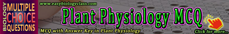 plant physiology quizzes